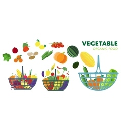 Vegetable on the basket vector image vector image
