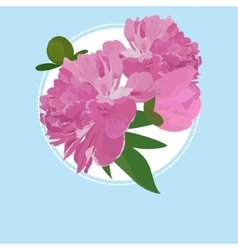 Greeting card with peony flower can be used as vector image vector image