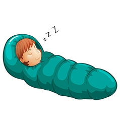 Sleeping bag vector
