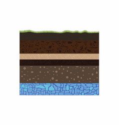 soil formation and groundwater vector image