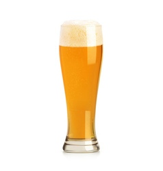 Beer object vector