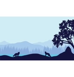 Landscape fox in fields silhouettes vector