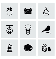 Bird icon set vector image