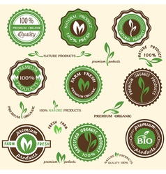 Collection of organic labels and icons vector