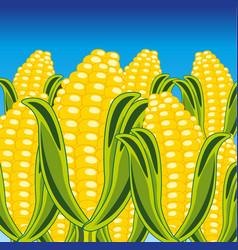Field of the ripe corn vector