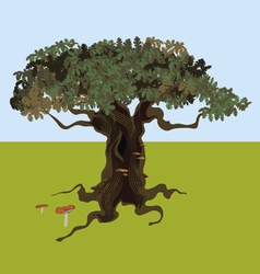 fantastic oak vector image