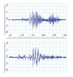 Seismographs Graph output by a seismograph vector image