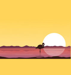 Silhouette flamingo on lake at sunset scenery vector