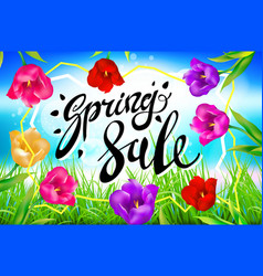 spring sale background banner colotful tulips vector image