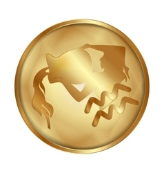 Aquarius gold medallion drive vector