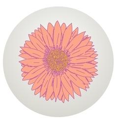 Beautiful gerbera flower vector