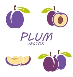 flat plum icons set vector image vector image