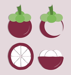 Set of mangosteen icon vector