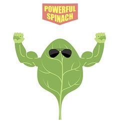 Powerful spinach a strong plant with big muscles vector