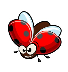 funny cartoon ladybug vector image vector image