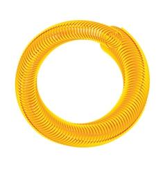 Golden hose vector