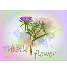 Thistle watercolor food vector