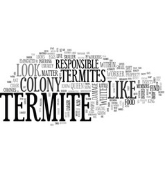what does a termite look like text word cloud vector image