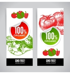 Set of banners with hand drawn sketch vegetable vector