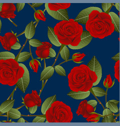 Beautiful red rose - rosa on indigo blue vector