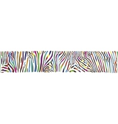 Background with multicolored zebra skin vector