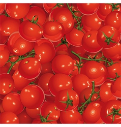 Background of tomatoes vector
