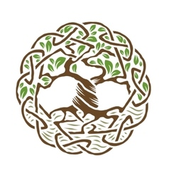 Celtic tree of life vector