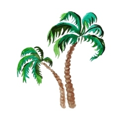Palms watercolor painting on white background vector