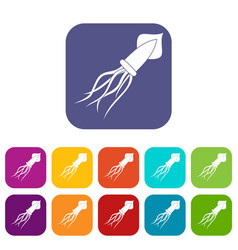 Squid icons set flat vector