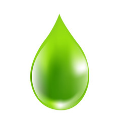 green drops vector image