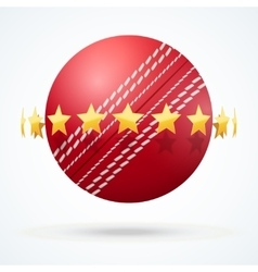 Cricket leather ball with vector