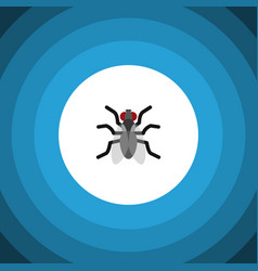 Isolated mosquito flat icon gnat element vector