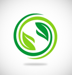 recycle green leaf environment logo vector image