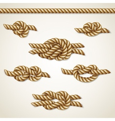 Yellow nautical rope knots set over beige vector image vector image