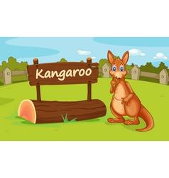 a kangaroo vector image vector image