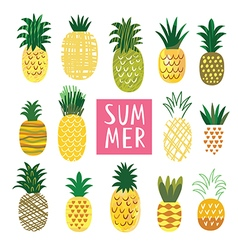 Ananas Collection vector image vector image