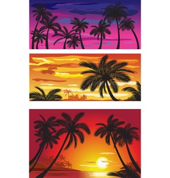 landscapes with palms at sunset vector image