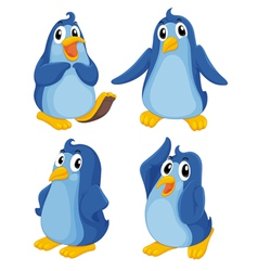 Penguins vector image vector image