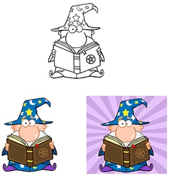 Funny Wizard Holding A Magic Book Collection vector image