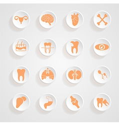 Body icons button shadows set vector
