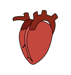 Human heart icon image vector