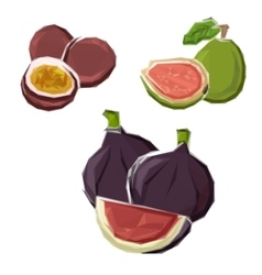 Low poly figs guava and maracuja fruits vector
