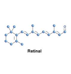 retinal vitamin a aldehyde vector image vector image