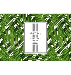 Tropical Palm leaves seamless vector image