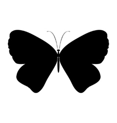 Black silhouette butterfly vector image