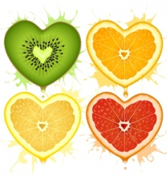 citrus hearts vector image