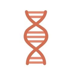 Genes vector