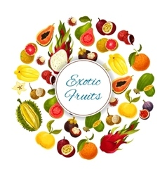 Exotic and tropical fresh fruits poster vector
