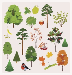 forest collection vector image