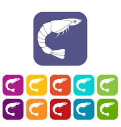 Fresh sea shrimp icons set flat vector